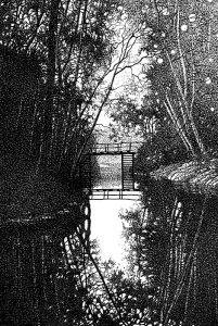 Куршин. Внутренняя протока 27x19 1994 г