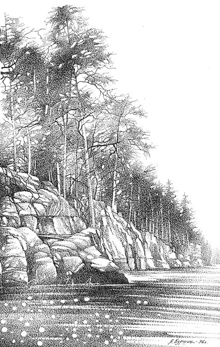 Куршин. Валаамский берег 32x21 1996 г