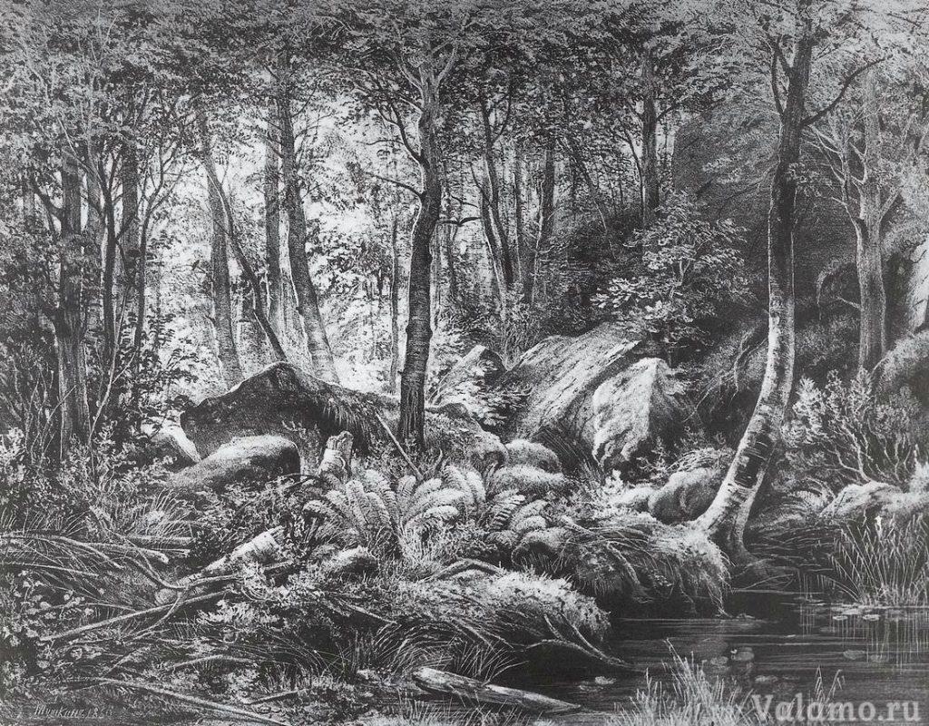 Шишкин Иван Иванович. Трущоба (Вид на острове Валааме). 1860г. 20х26