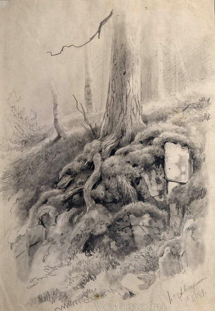 И. И. Шишкин. Корни дерева. 1859. Валаам.
