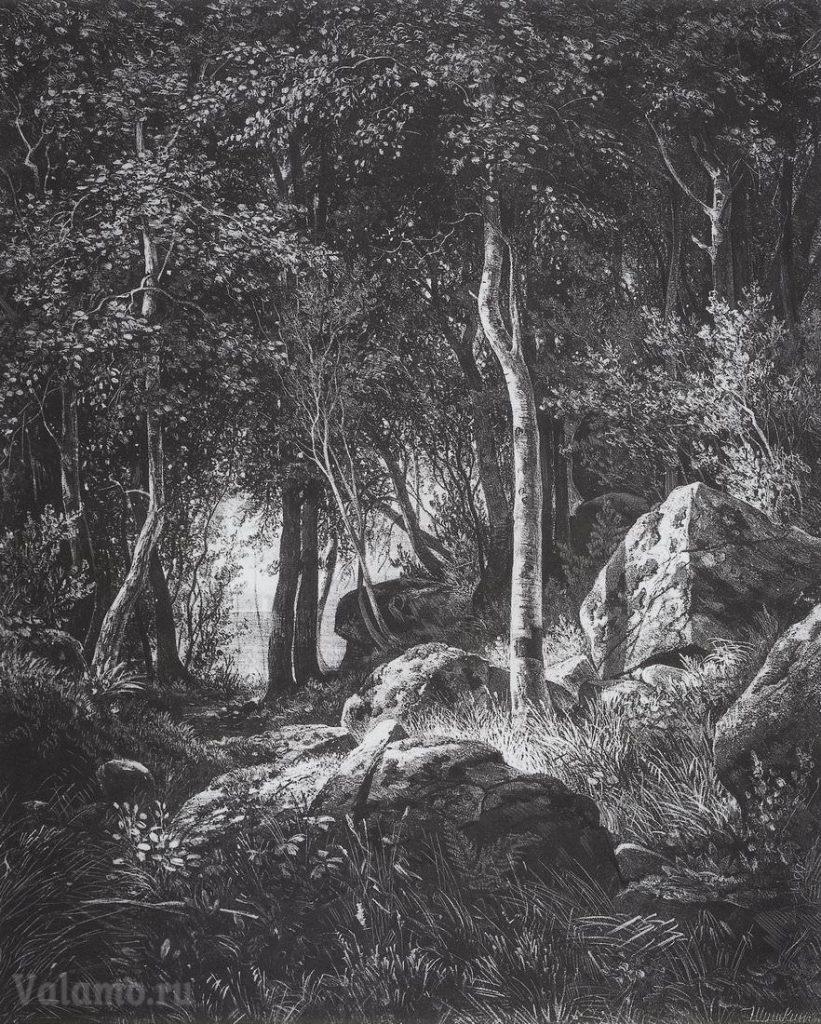 shishkin.-na-krayu-berezovoj-roshhi.-ostrov-valaam.-1859-1860-44-4x37-