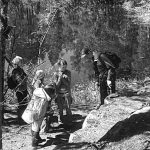 Здесь добывали серый сердобольский гранит для колонных залов Эрмитажа