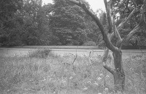 1983-разрушенный Валаам-Яковчук 164 Скит Всех Святых