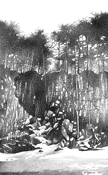 Куршин. Местность ``Кукко`` 28x18 1995 г