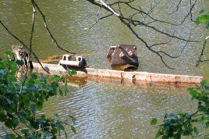 Затонувший корабль в Монастырской бухте. 2011
