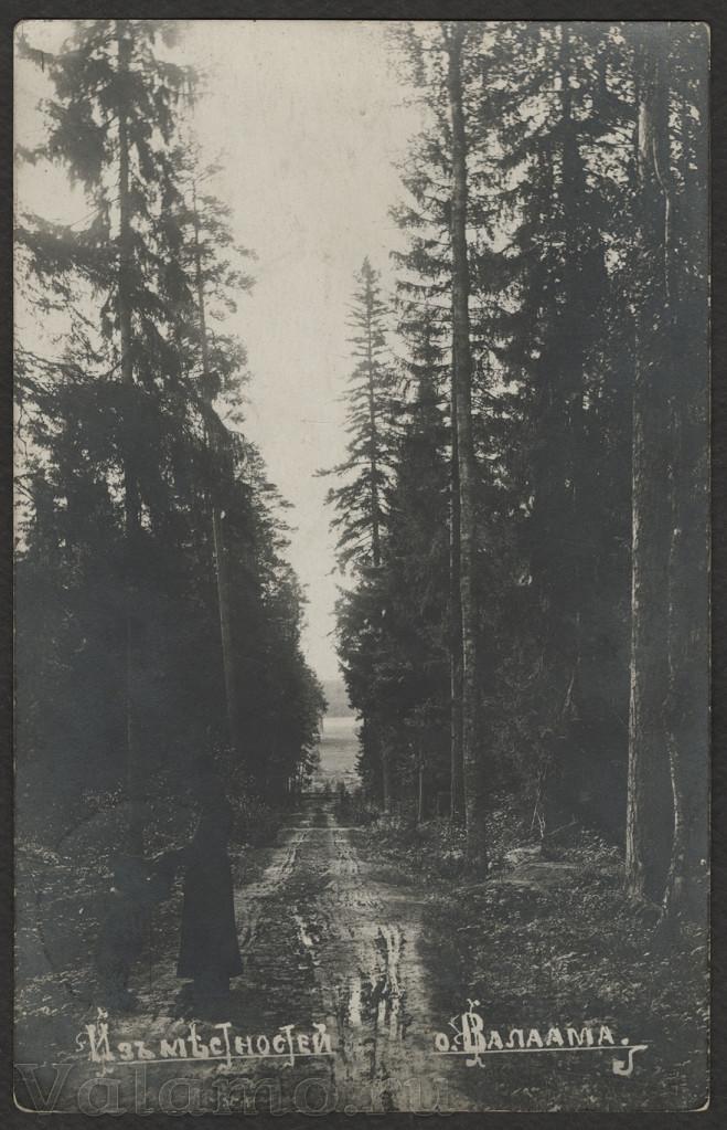 otkrytka na fotobumage iz mestnostej o. valaama 139x89 sm oernb.2 1