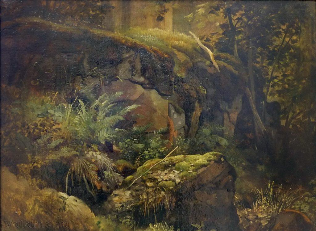 И.И.Шишкин. Камни в лесу. Валаам. 1858. Фото: Я. Гайдукова.