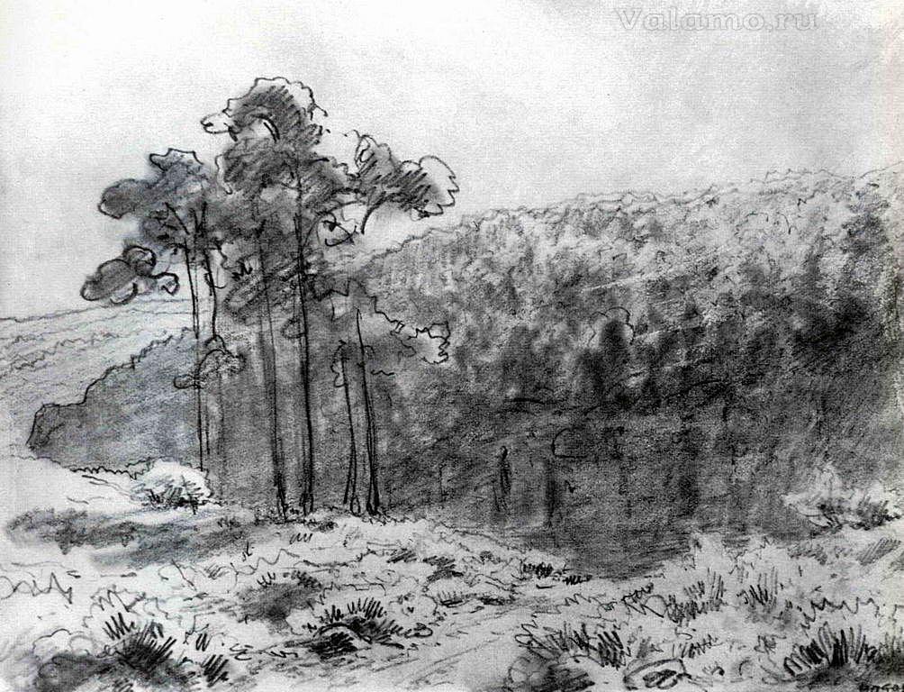 Васильев Федор Александрович. Лесистые холмы. Валаам. 1867г.